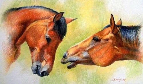 Pferdeporträt Pastell auf Karton
