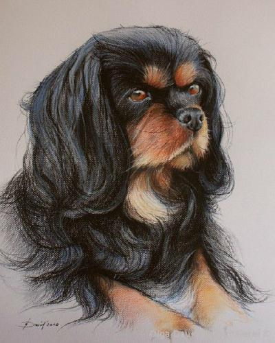 Hundenporträt Pastell auf Pastell